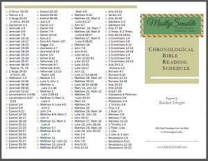 catholic daily bible reading guide 2017 pdf