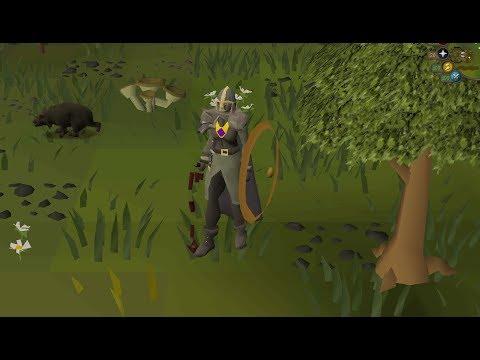 1 99 hunter guide osrs