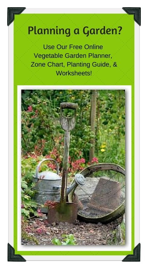vegetable planting guide zone 4