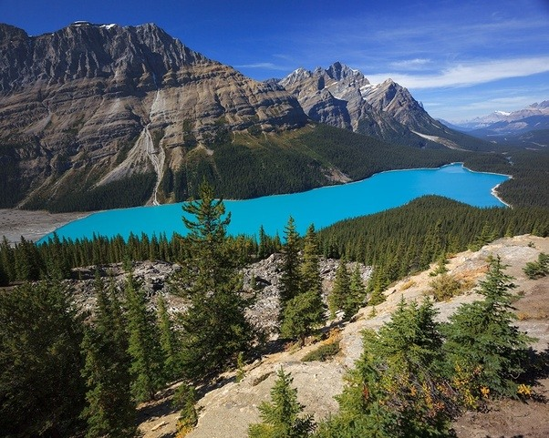 swiss guides in the canadian rockies