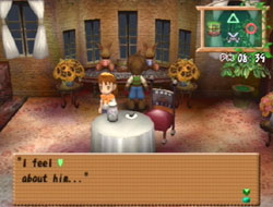 harvest moon a wonderful life special edition gift guide