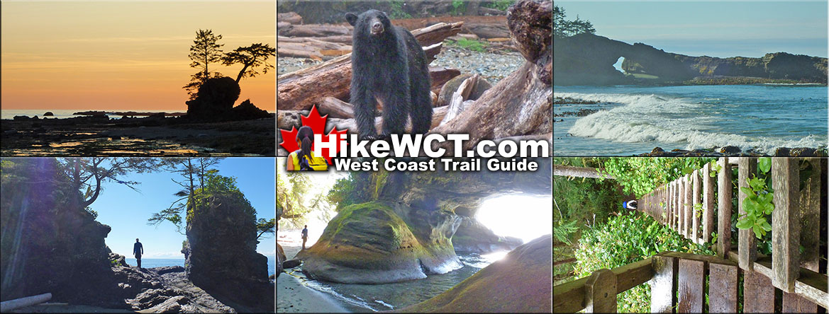 hiking the west coast trail a pocket guide