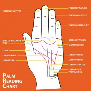 palm reading guide health line