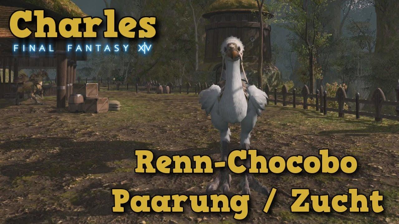 final fantasy 9 chocobo guide