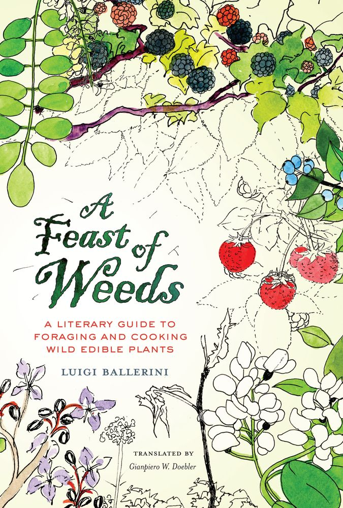 guide to edible wild plants