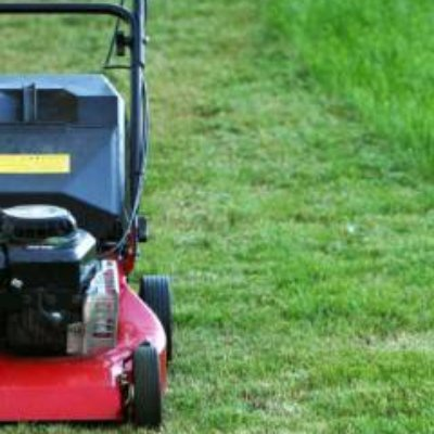 home depot lawn care guide