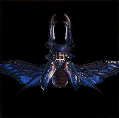 monster hunter world kinsect guide